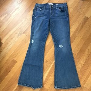 Denim - Divine Rights of Denim jeans.